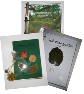 Herbarien aus dem Biologieunterricht 6a/b (Sj 17/18)